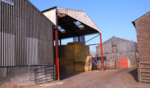 , Greener Pastures The Launch of StaGreen by HydroCan - Case Study Example
